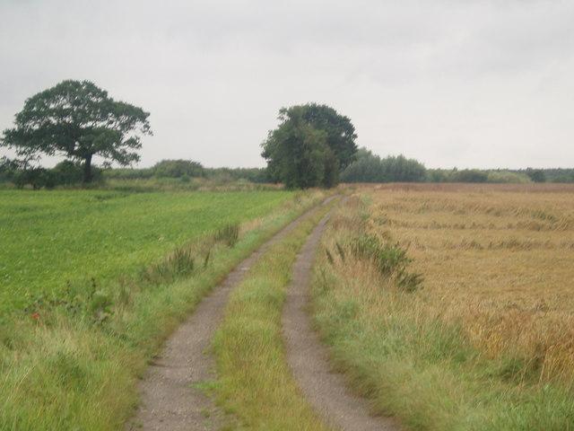 Lane to the Railway