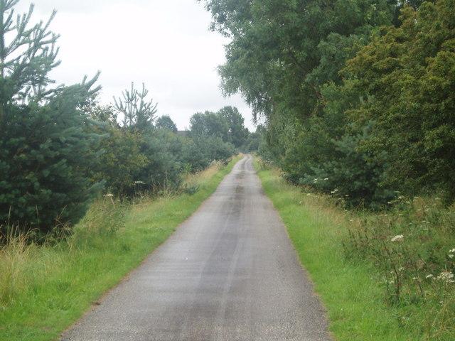 Ninescores Lane