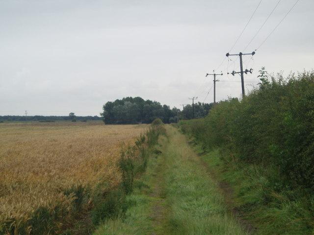 Lane to Dale Mount