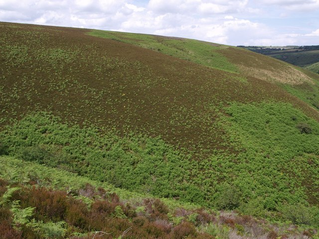 Hillside above Weir Water
