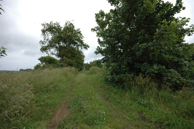 Old farmtrack near Greenheads Farm