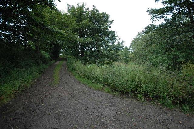 Farm track to Burnside Farm
