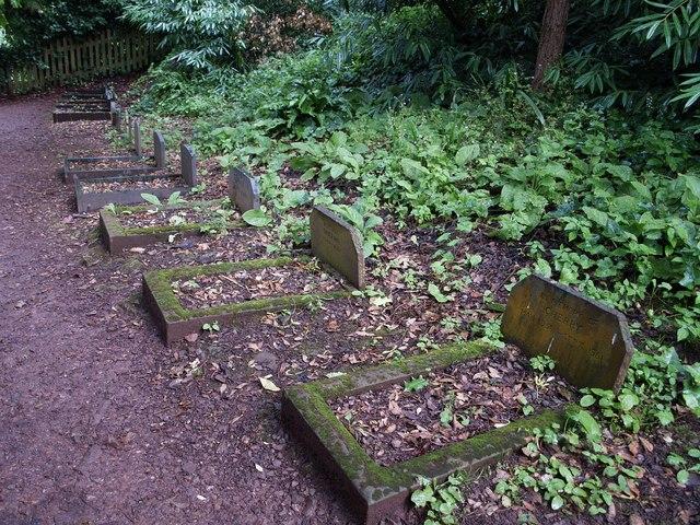 Pet Cemetery, Dunster Castle