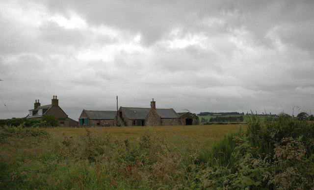 Fields and Farm