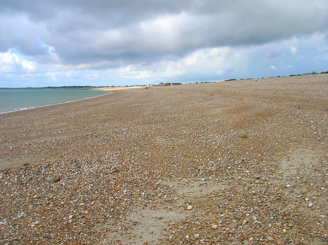 Is Pagham Beach Dog Friendly
