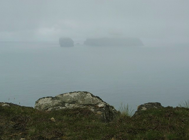 On the cliffs of Hirta