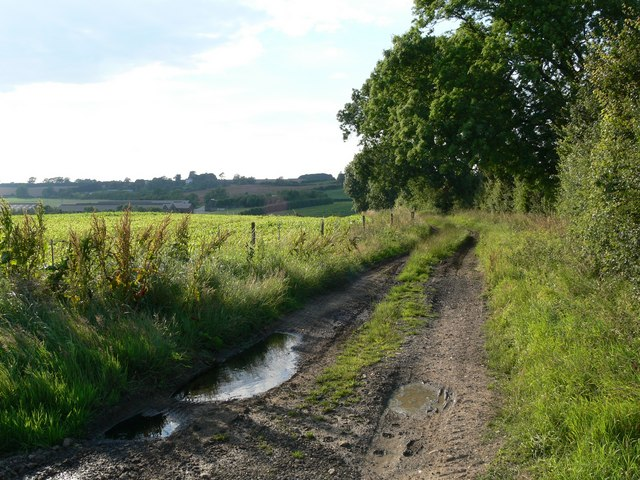 Public Bridleway near Frisby, Leicestershire