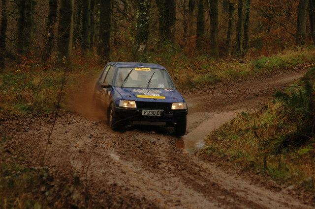 Rally car in Dalbeattie Forest