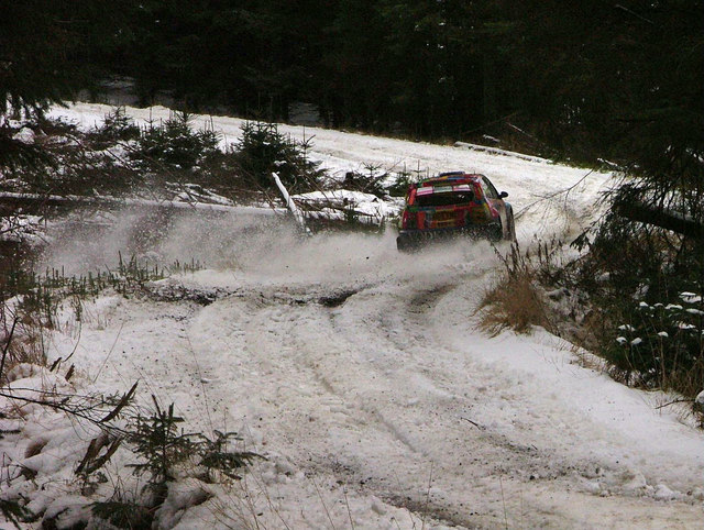 Rally car in the depths of Kielder Forest