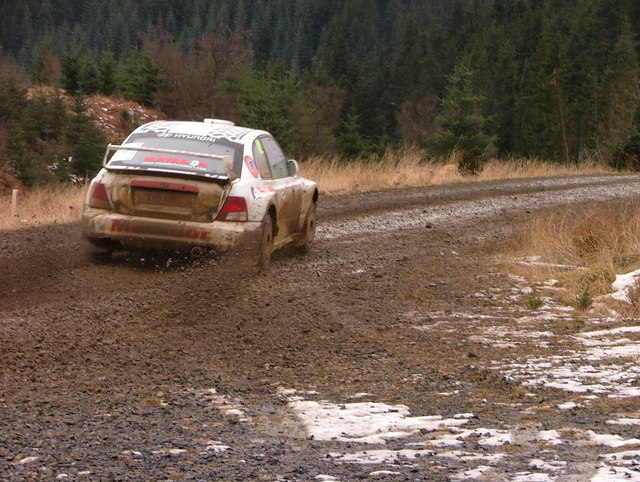 rally car in Bewshaugh Forest, Kielder