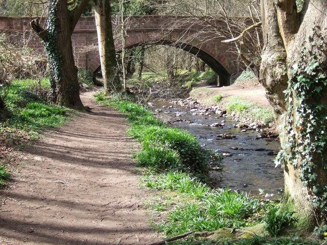Bridge on Fairy Glen Walk