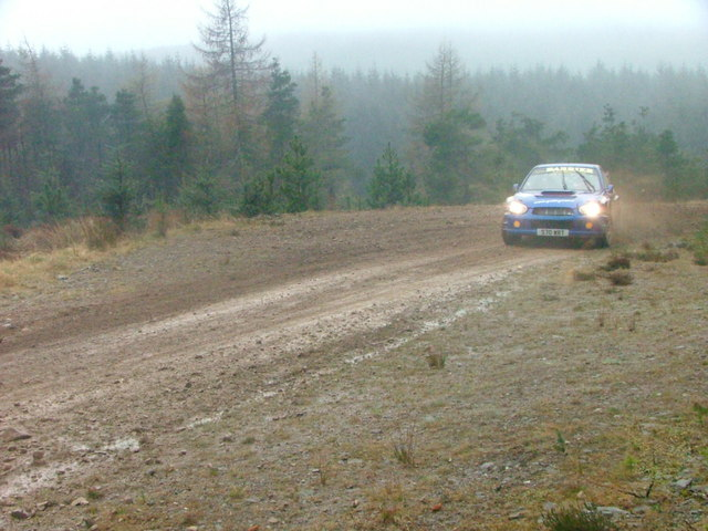 Rally car in Fetteresso Forest