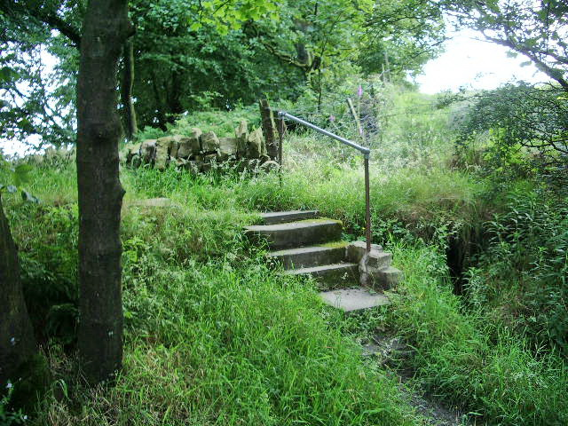 Steps over the overflow of Bryan Hey Reservoir