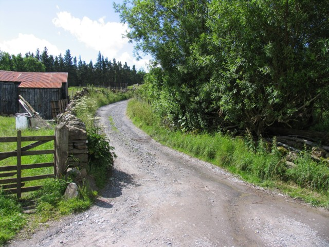 Track to Swinhopeburn