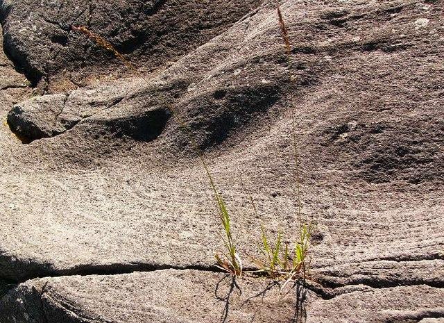 Basalt rocks, Ardtoe