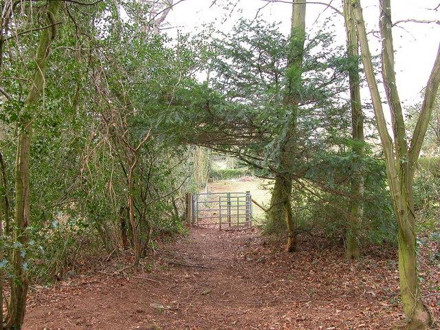 Kissing Gate in Wallhope Grove