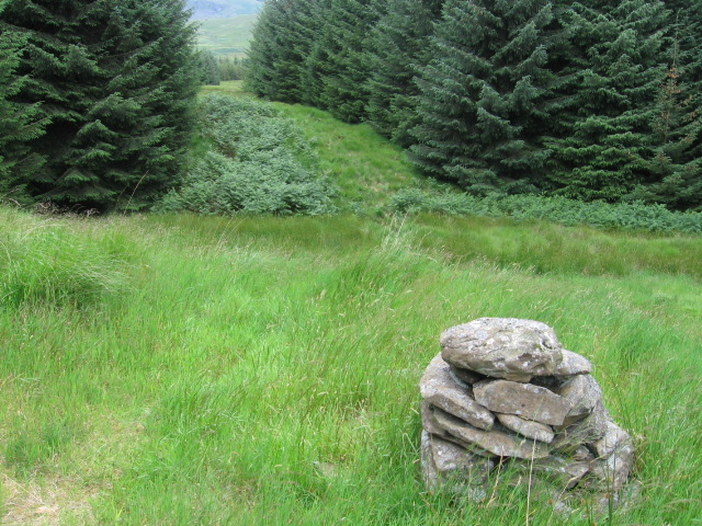Lochanhead path at Shepherds Cairn