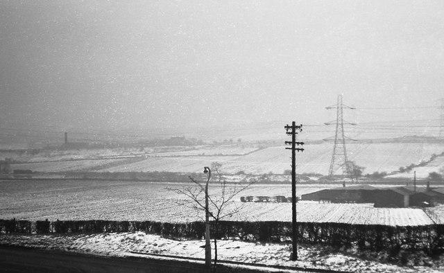 Rhubarb fields, Alverthorpe, winter 1959