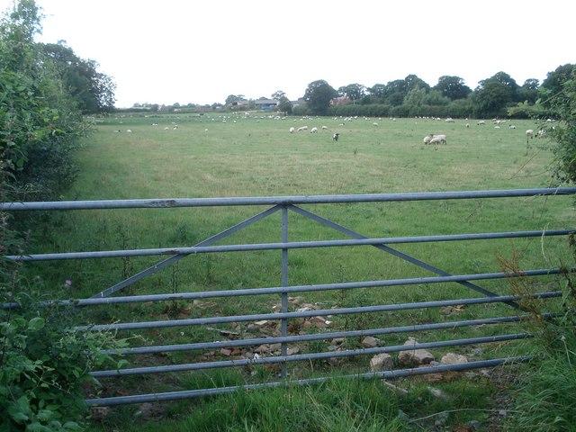 Saleway Farm