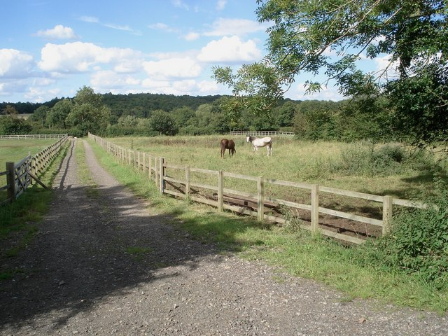 Paddocks near Lower Saleway Farm