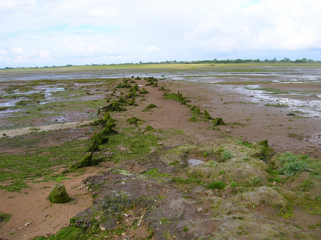 Jetty Remains, Pagham Harbour