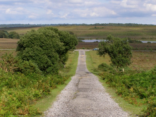 Track from Dur Hill Inclosure, New Forest