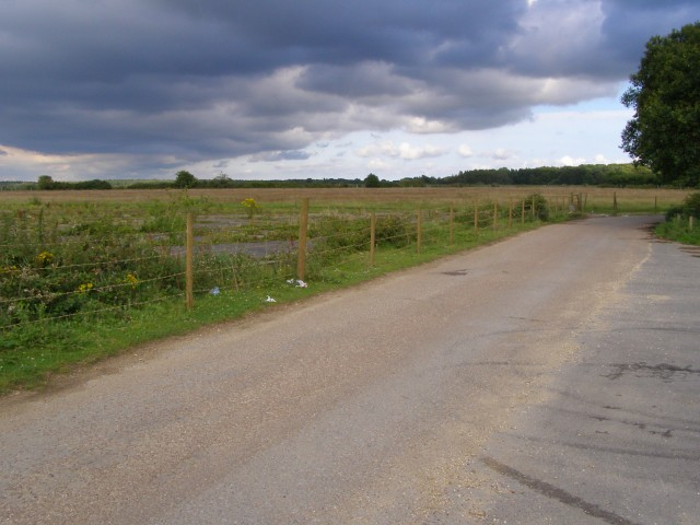 Black Lane, Holmsley, New Forest
