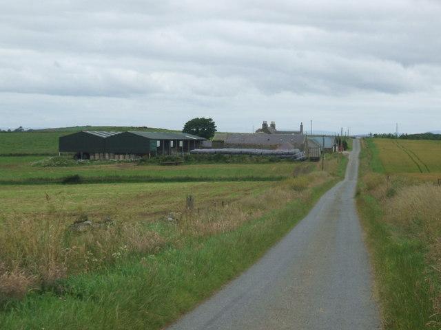 Upper Arthrath