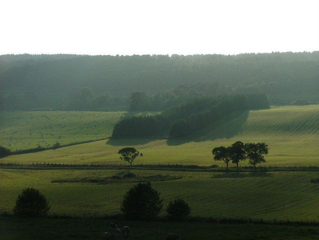 Farmland and forest by Crofts of Kingscauseway