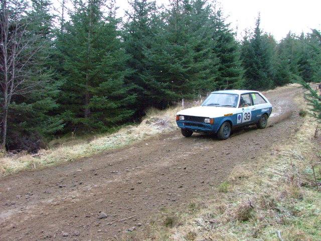 Forest track in Glenurquhart