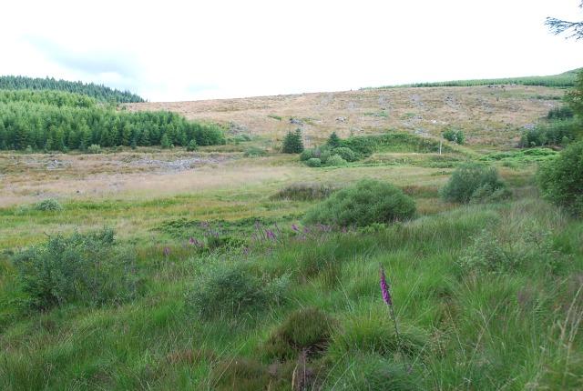 Lochgilphead Rifle Range