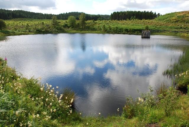 Reservoir near Blarbuie