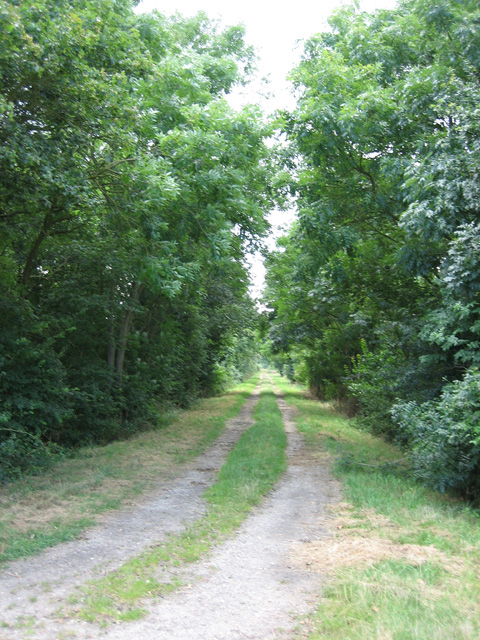 Disused railway track: LNER to Hadleigh
