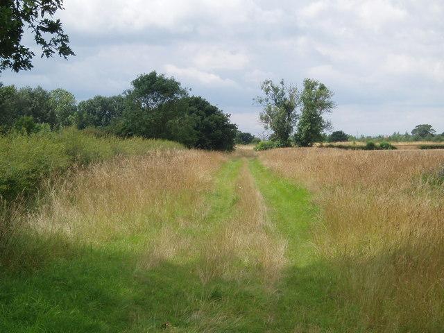 Field track west of White Bridge Farm