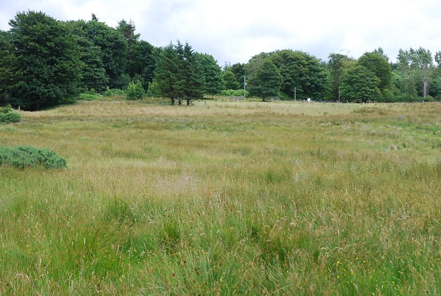 Field near Monydrain