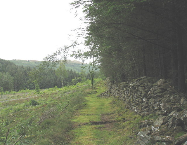The bridle path towards Dolfrwynog