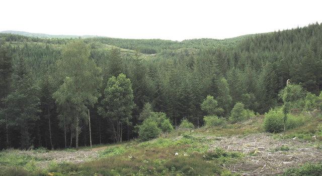 View northwards from the bridleway towards Bwlch Garw