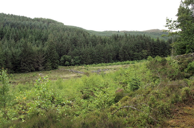 Forest clearing with the ruins of a copper mine