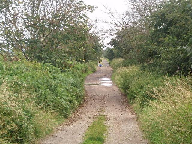 Hatfield Lane to Level Crossing