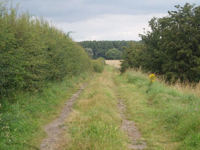 Lane by Brosley Hills