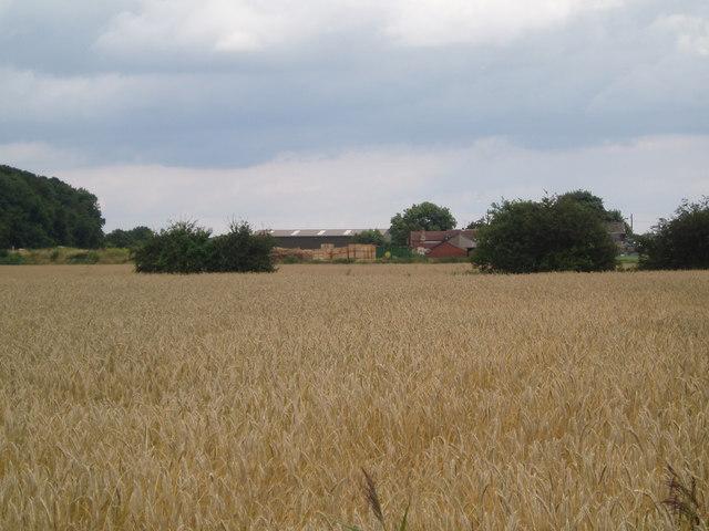West Moor Farm