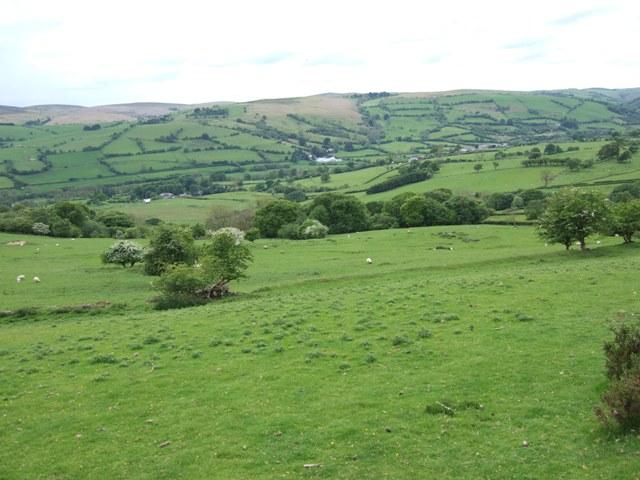 Pastoral tranquility near Llanllwyd