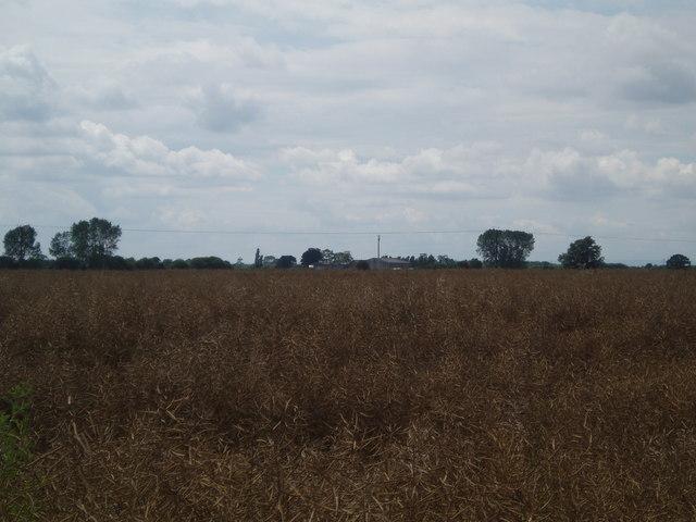 Over the fields to Poplars Farm
