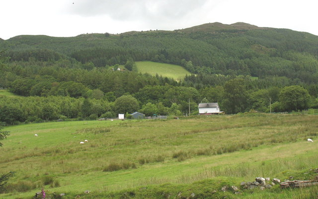 The clapboarded Dolfrwynog isaf from the forest