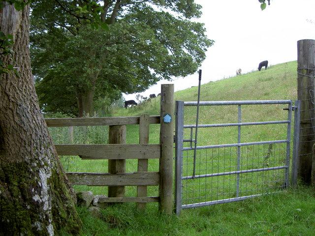 Gate and footpath near Llanferres