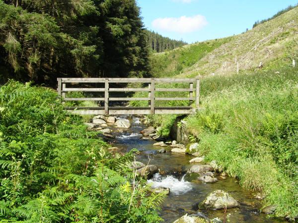 Footbridge over Spout Gill