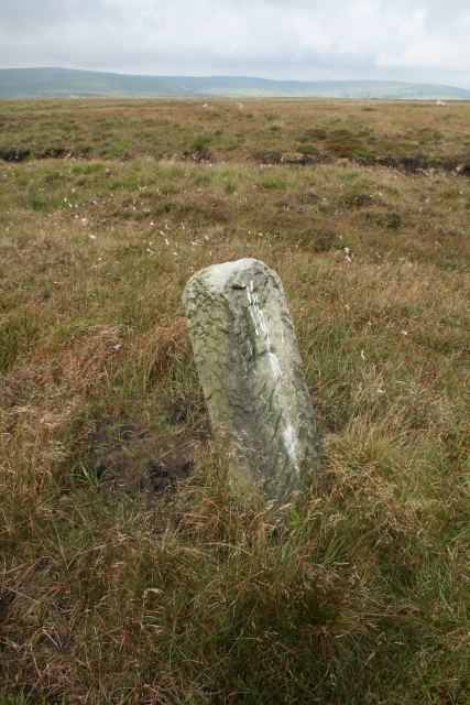 Boundary Stone on Langfield Common.