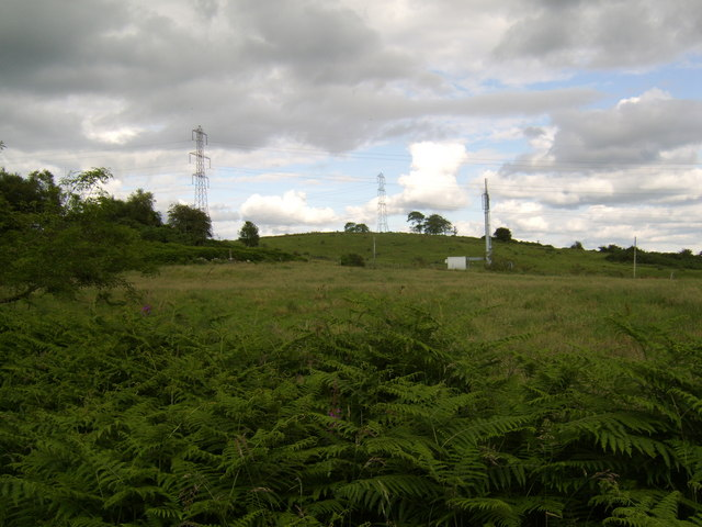 Field by public path, Douglas Muir