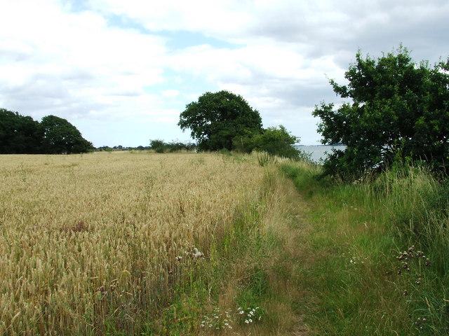 Suffolk Coastal & Heaths Path