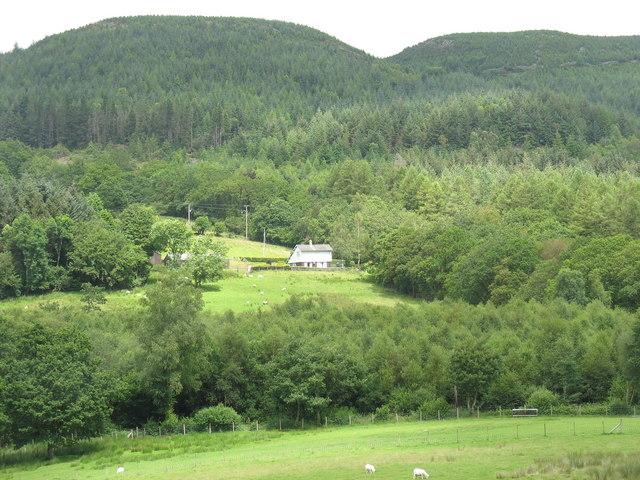Buarthre Newydd from Dol-frwynog